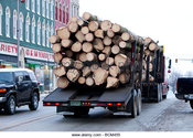 Main thumb logging truck driving through rockville indiana bcm455